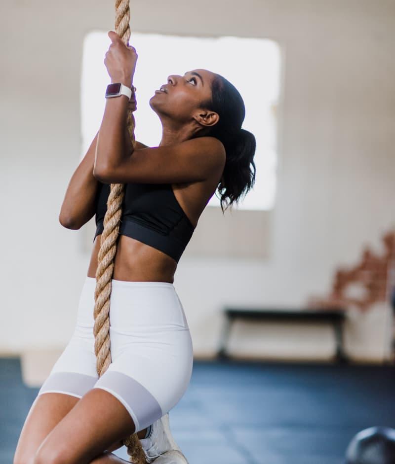 programme fitness coaching